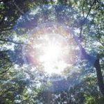 5月7日 太陽意識のエネルギーワーク 前に進む光